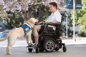 Quadriplegic Living at home and Independently