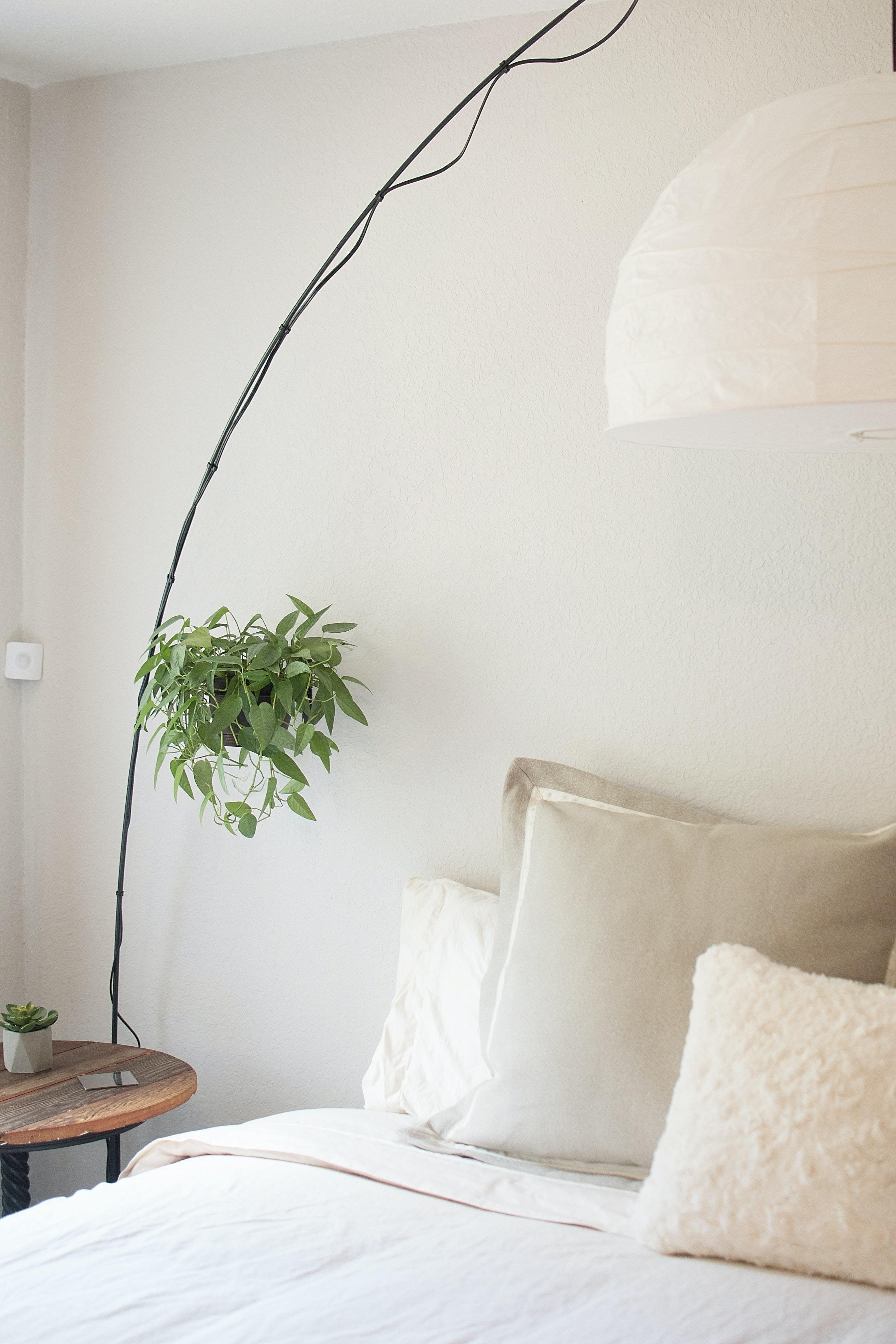 white bed with a plant next to it