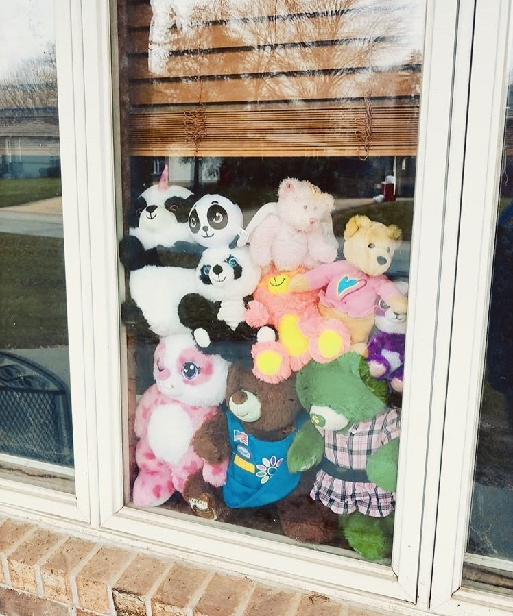 Teddy Bears in window during coronavirus pandemic