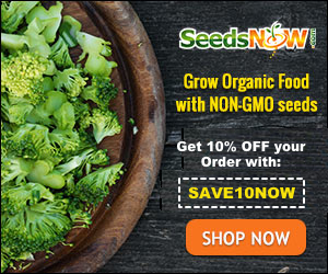 SeedsNow Grow Organic Food with Non-GMO seeds