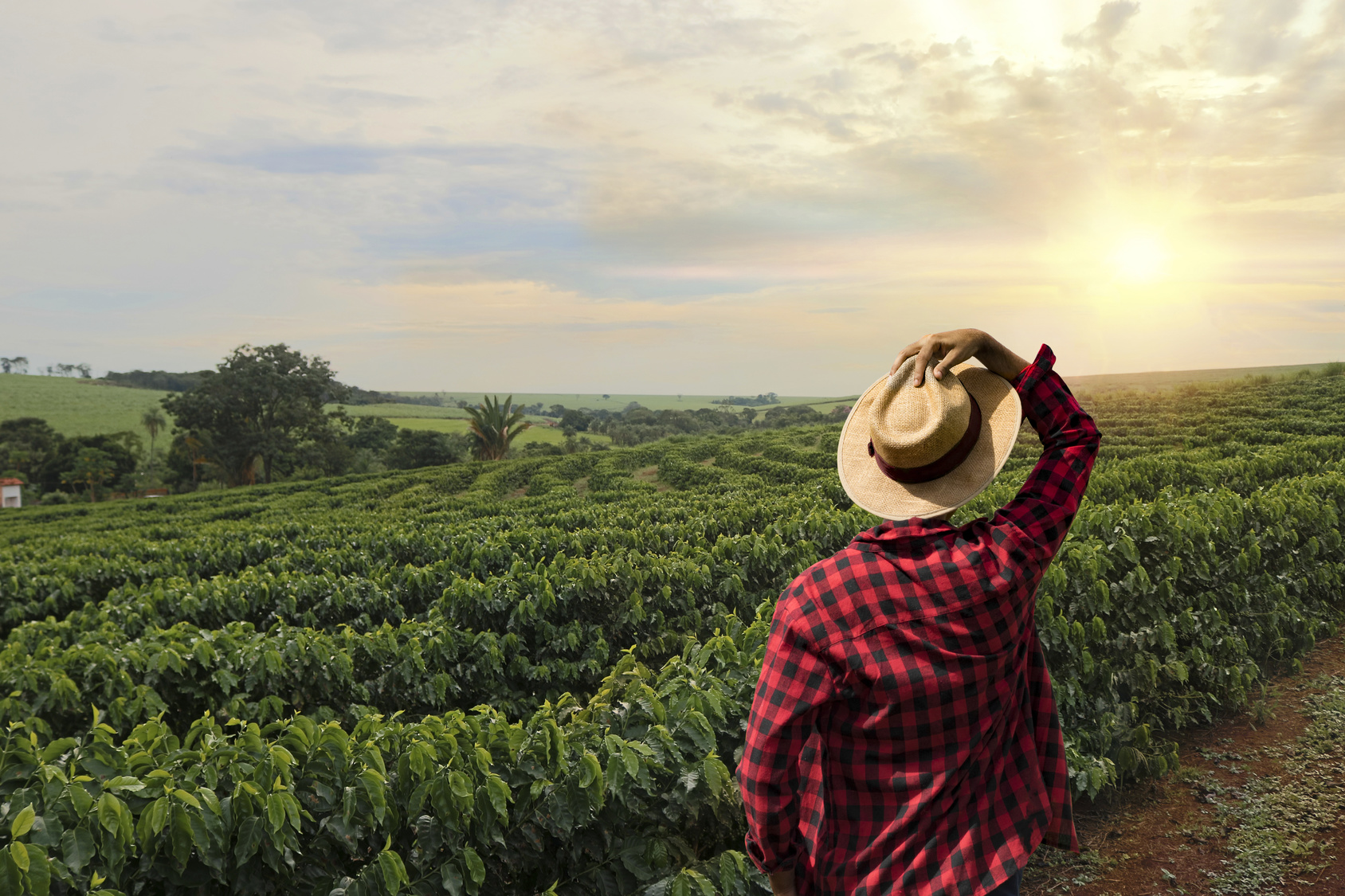 How to Invest in Agricultural Real Estate in Illinois