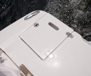 Stainless Transom Ladder with Fiberglass Cover