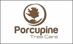 Porcupine Tree Care