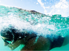 Small_original_fitness_optisport_impressie_zwemmen