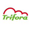 Mid_original_fitness_enschede_trifora_logo
