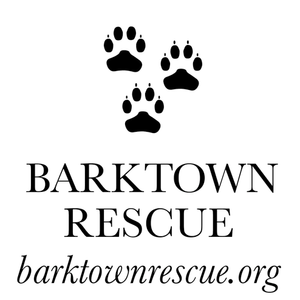 Barktown Puppies Wedding Registry