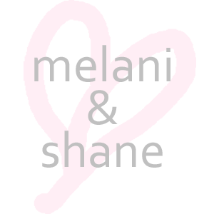 Melani & Shane Wedding Registry