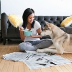 Rental-Property-and-Pets-1