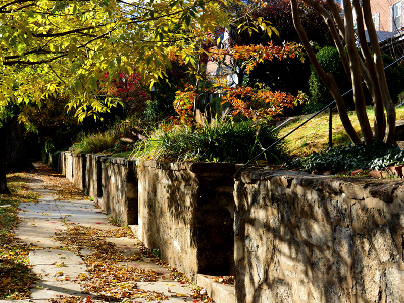Burleith Neighborhood Washington DC