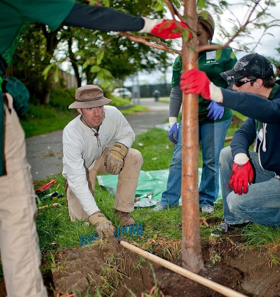 Boston Still an Urban Orchard 400 Years After First Apple Farm