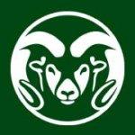 Colorado State University - CSU