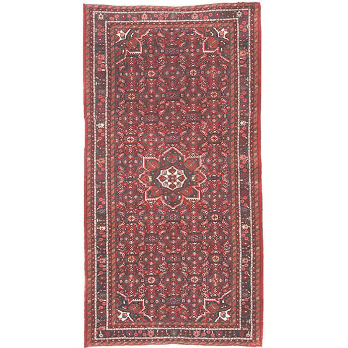 Old Persian Hamedan Area Rug 5.5x10.4