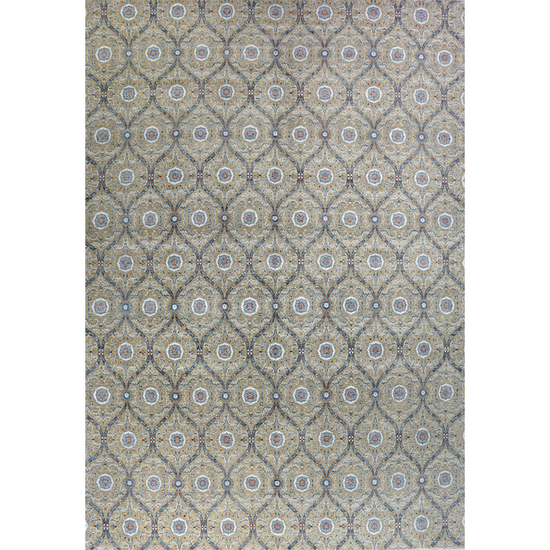 Transitional Style Area Rug 14.0x20.3 - A501014