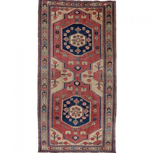Old Persian Malayer Area Rug 5.5x10.9 - B500834