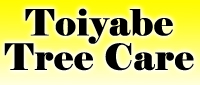 Website for Toiyabe Tree Care, Inc.