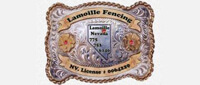 Website for Lamoille Fencing