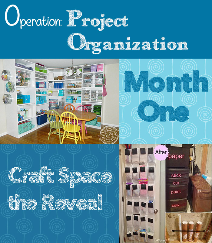 Operation Organization Month 1 Reveal