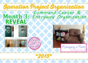 operation-project-inspiration-Month-3-reveal-300x215