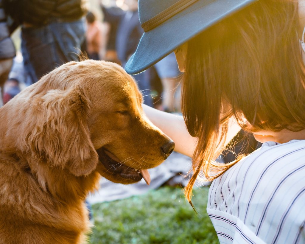 How to Find Rental Housing with a Pet