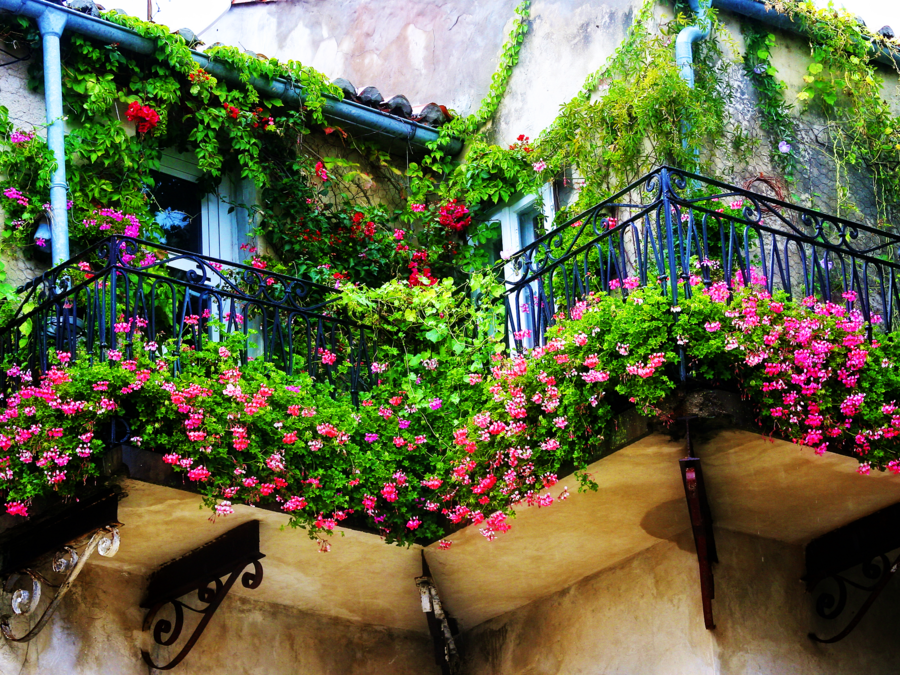 Create a Spectacular Balcony Garden for Your Apartment - ABODO ...