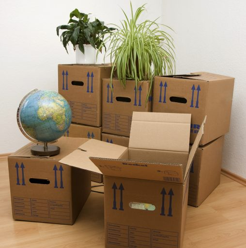 Moving Boxes for Office
