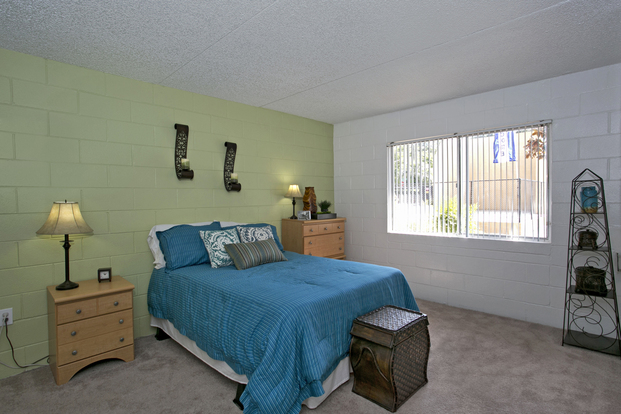 Spacious bedroom with oversized windows in Campus Walk bedroom