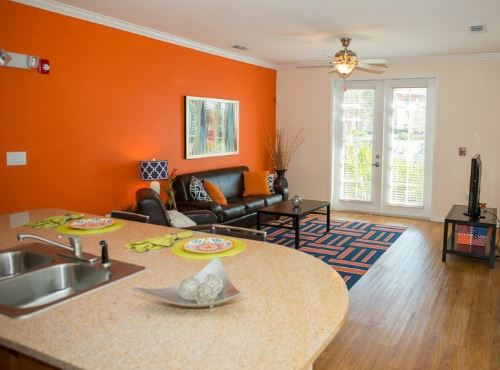 Colorful and bright interior of a Canopy Apartment & Gorgeous Gainesville Apartments for UF Students - ABODO Apartments