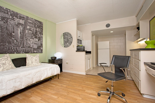 Large College Manor studio with built-in features and hardwood floors