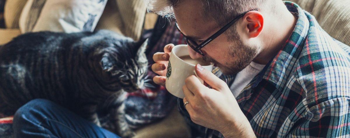 Find a pet-friendly apartment