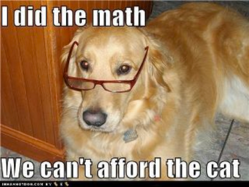 Dog says we can't afford the cat