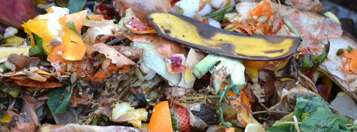 Recycle food waste to make nutrient-rich soil