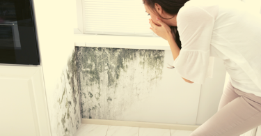 removing mold at home