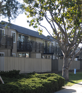 255 Apartments in Cupertino, CA (Reviews and Ranking) | Page 14