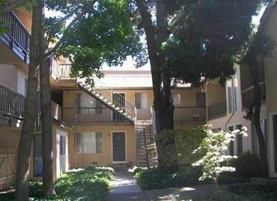 Tamarack Apartments Santa Clara See Pics Avail
