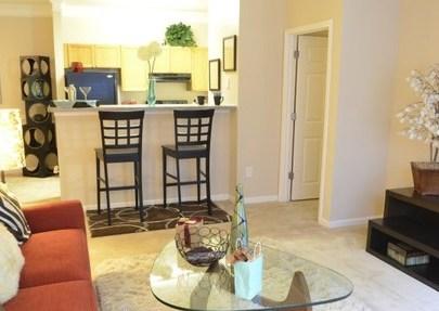 Edgewater Vista Decatur Atlanta Area Apartment Details