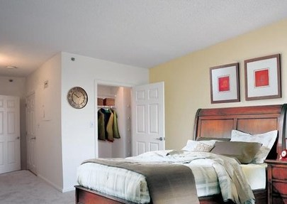 3 Bedroom Apartments In New Rochelle Ny 3 Bedrooms