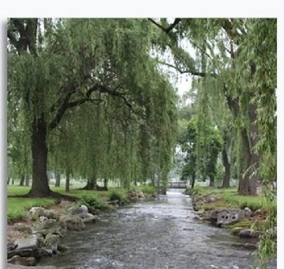 Hamilton Gardens, Allentown - (see pics & AVAIL)