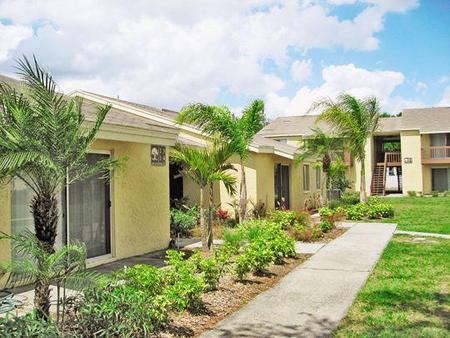 Live Oaks Apartments Tampa