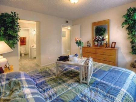 Auburn Glen Apartments Jacksonville See Pics Amp Avail