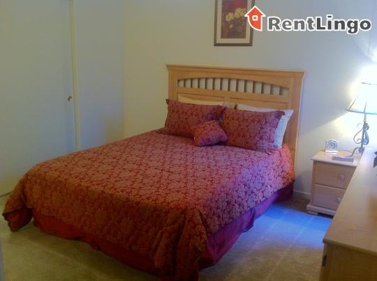 Zephyr Pointe Apartments rental