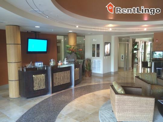 AMLI City Vista for rent