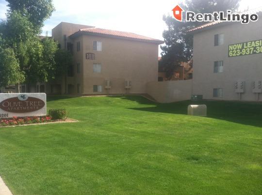 Olive Tree Apartments Glendale Az