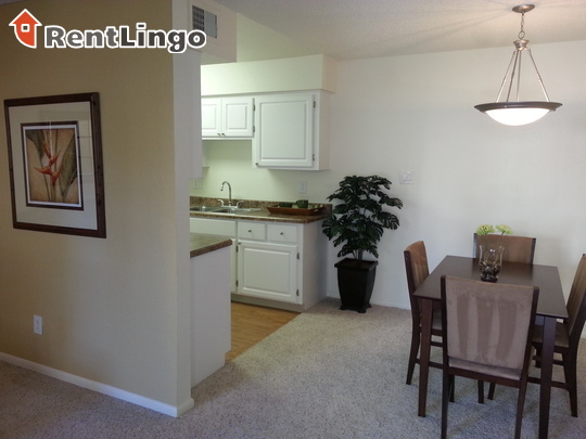 8025 East Lincoln Drive Apt 67311-1 rental