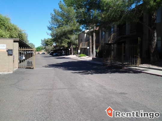 Desert Springs Apartments for rent