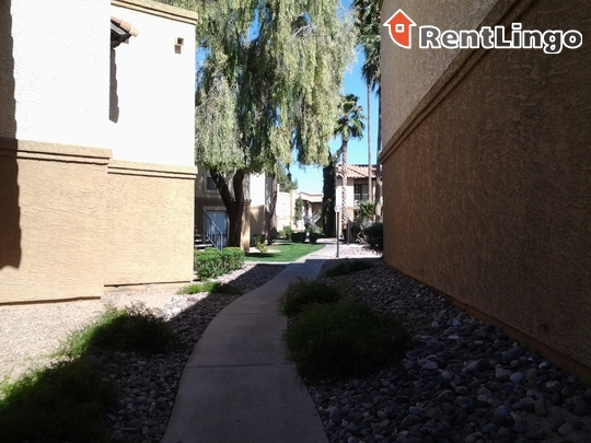 Mountain View Casitas rental
