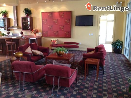 Shade at Desert Ridge for rent