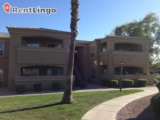 Pet Friendly for Rent in Chandler