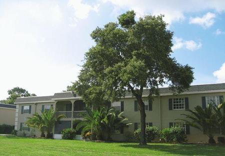 Regency Square Apartments Tampa Fl