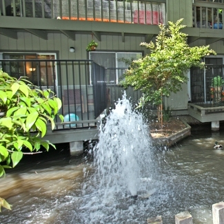 Riverdeck Apartments Sunnyvale See Reviews Pics Amp Avail