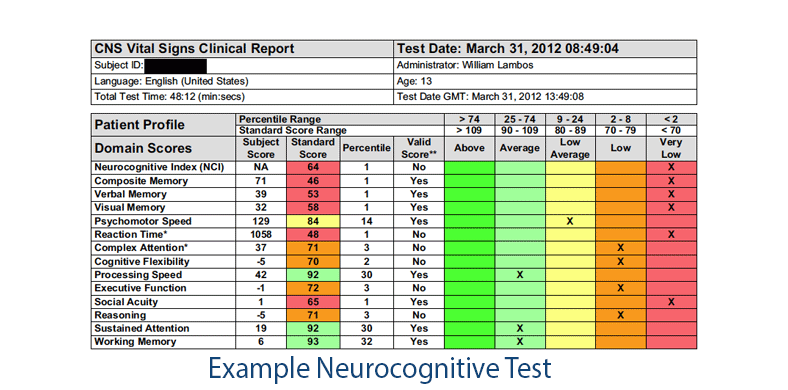 neuropsychological testing results